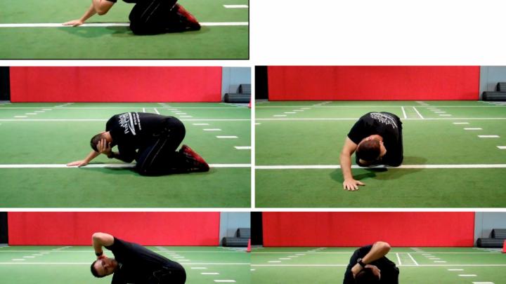 Quadruped T Spine Self Mobilization By Brian Schiff Pt Ocs